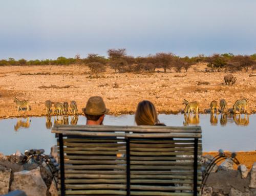 Top 4 vacanțe exotice pe care să le organizezi într-o viaţă