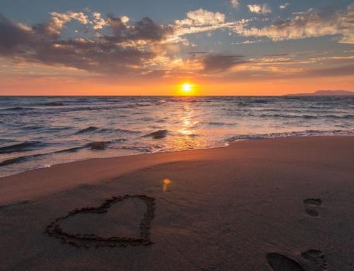 7 lucruri pe care le poți face dacă ajungi la Nisipurile de Aur